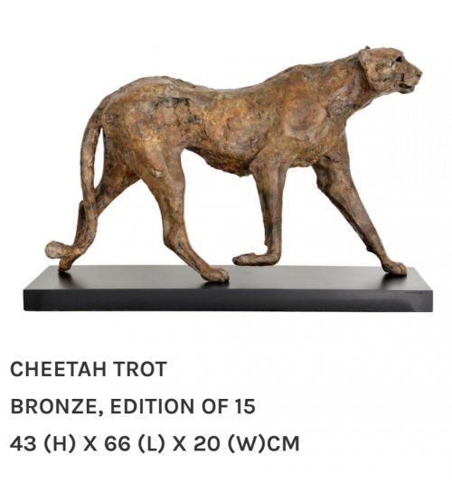 Cheeta on the trot
